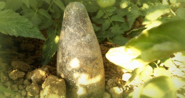 Orgonita entre plantas - orgonangel